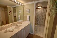 Master Bathroom View 1