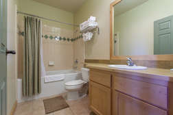 Guest Bathroom - shower and tub