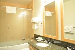 Master Bathroom- Tub & Shower; En-suite