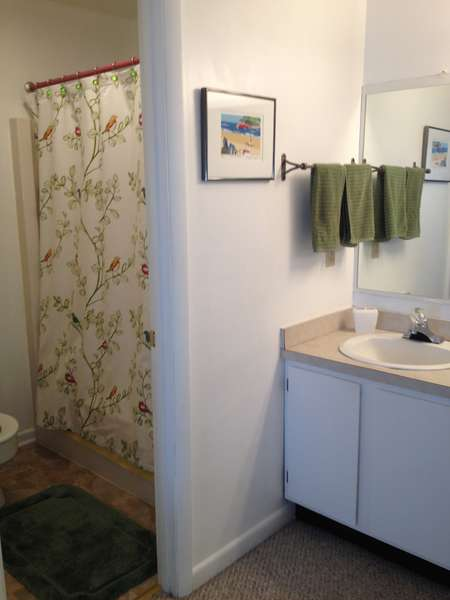 Master bath - tub with shower and toilet separate from sink