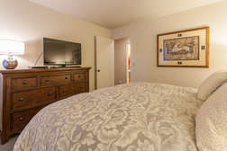 Downstairs Master Bedroom with King Bed and Flat Screen TV and Smart Blue Ray Player