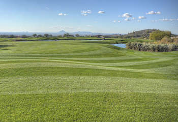 There are infinite golf courses in Mesa - which one will you choose to try first?