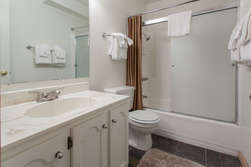 Master Bathroom-en-suite- Shower-