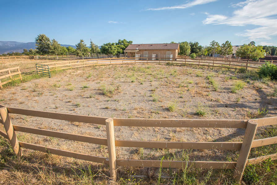 Area behind horse stables for horses to