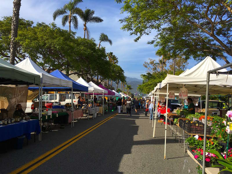 Visit the local Farmers Market for fresh produce!