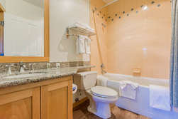 Guest Bathroom- Shower and Tub